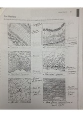 tissue identification worksheet