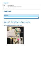 Joints and Body Movements - Experimentation report.pdf