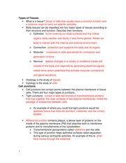Cell Defense The Plasma Membrane Worksheet Answers