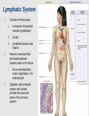 Lymphatic System 1120