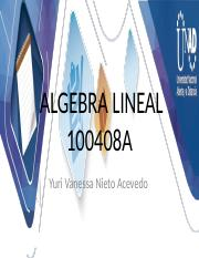 ALGEBRA LINEAL 100408A_360 Webconferencia 2.pptx