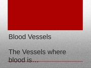 Blood Vessels Lecture Slides