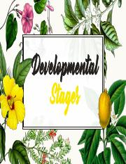 DEVELOPMENTAL STAGES.pdf