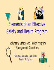 Example-Safety-Program.pdf