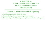Ch. 10 - Cell Communication - Notes