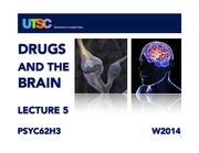 PSYC62H3 - Drugs & the Brain - W2014 - Lecture 5 (Posted)