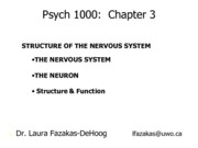 Psych1000_Chapter+3A Summer+2013