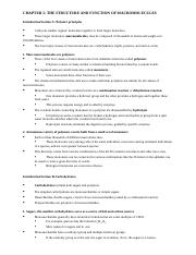 BSC_1010_CHAPTER_5_outline.doc