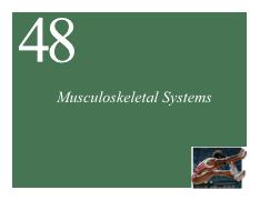 Ch48 Lecture-Musculoskeletal Systems full page