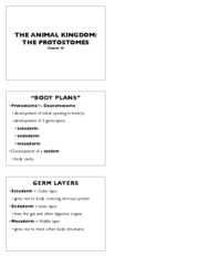 animals 2 notes