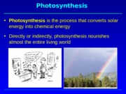 BIO311Clecture10-2015.ppt