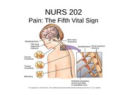 NURS 202 Week 3 Pain management 2014