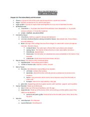 Chapter 22 Reading Guide.docx