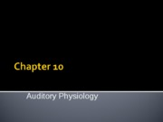 Hearing Physiology (1)