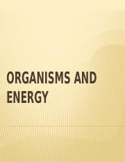 ORGANISMS AND ENERGY