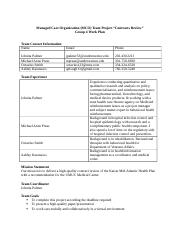 Managed Care Organization Team 4 Work Plan v3.docx