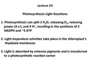 Lecture 24 Photo light