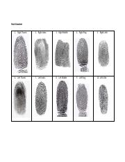 Male Decedent Fingerprints