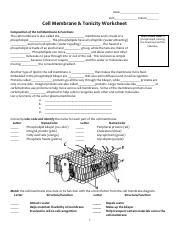cell membrane coloring worksheet name key date period cell membrane coloring worksheet. Black Bedroom Furniture Sets. Home Design Ideas