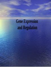 BIO CH 1- Lecture 10 Expression of DNA