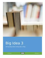 Big idea project.docx