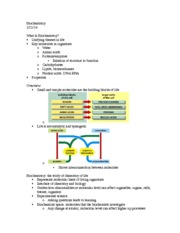 Biochemistry Lecture Notes 1