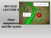 Lecture 8 land adaptations, plants posted