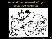 BIOL1104 - Fall 2015 - Lecture 2 - Principles of Evolution (3)