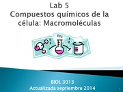 Lab 5 Macromoleculas Sep2014(1)