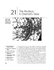 Chapter 21 - The Nucleus A Chemists View