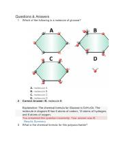Covalent Bonds.pdf - 1 In this model of a molecule of ...