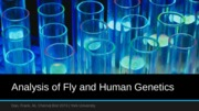Analysis of Fly and Human Genetics