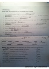 Carbohydrates Worksheet