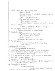 kinesology joints notes