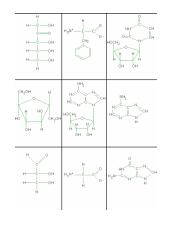 Biochemistry Pattern Matching Structures.pdf