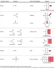 functional_groups