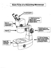 Microscope pictures