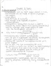 Ch15Notes
