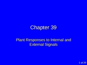 Chapter 39 - CR97-03