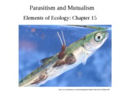 Lecture 18-Parasites + Mutualisms