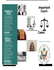 Pamphlet for Court Cases.docx