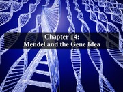 14_BSC_2010_Mendel_and_the_Gene_Idea_POS