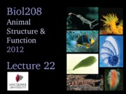 2012 Lecture 22 (Behaviour) UPLOAD