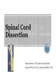 LAB 3 2017 Spinal Cord final3.pdf