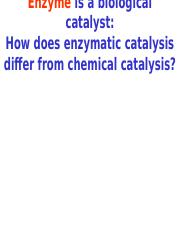 Lecture 1C - Enzymes .pptx