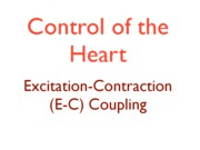 5 Control (EC Coupling) copy