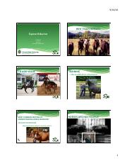 Equine Behavior-2.pdf