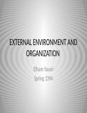 8-EXTERNAL ENVIRONMENT AND ORGANIZATION.pptx