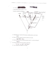 BISC120_Exam1_Fall07_page6