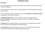 Lecture 1; Transport system part 1, 2016